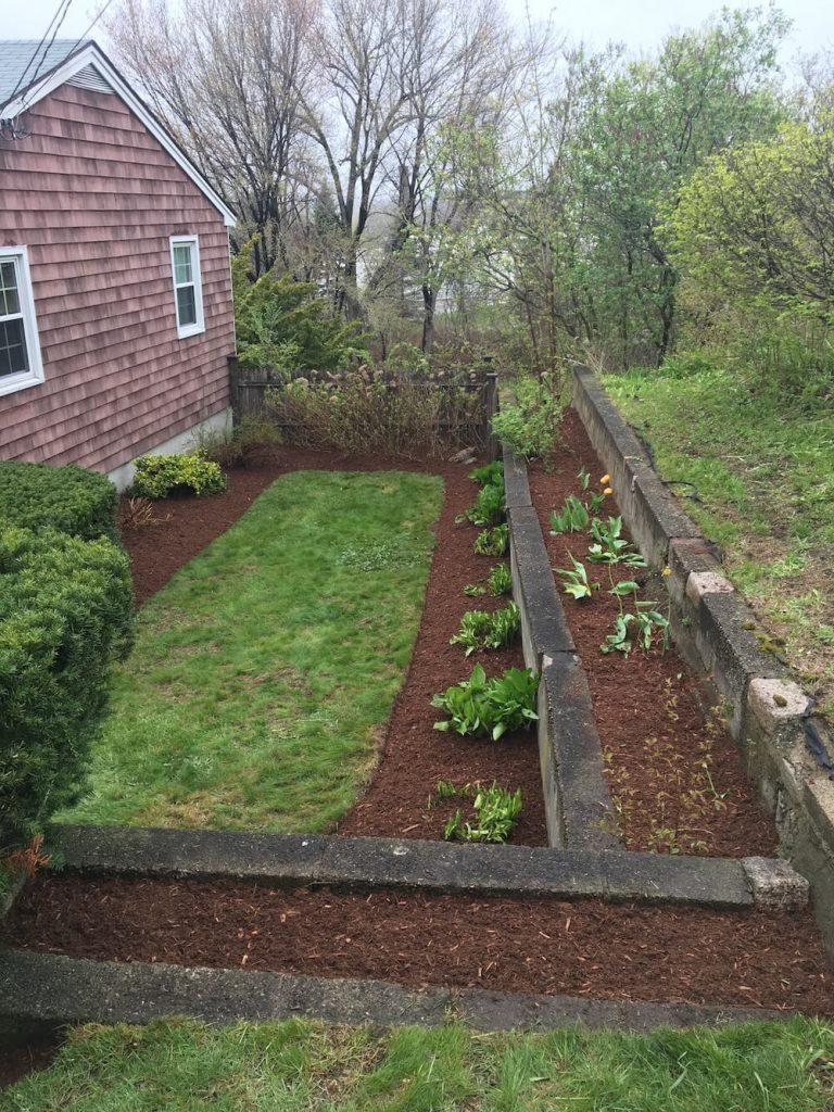 Finished garden bed