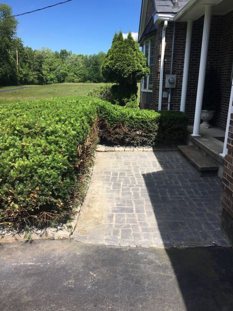 Walkway, hedge trim