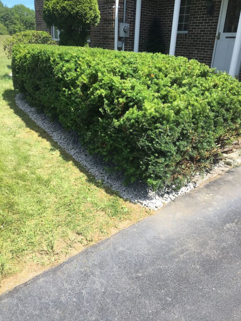 Front hedge trim, crushed stone