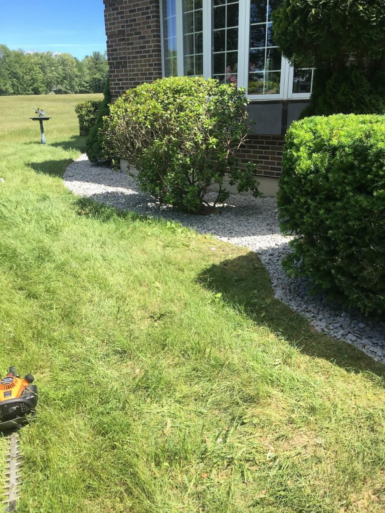 Front yard, crushed stone, hedge