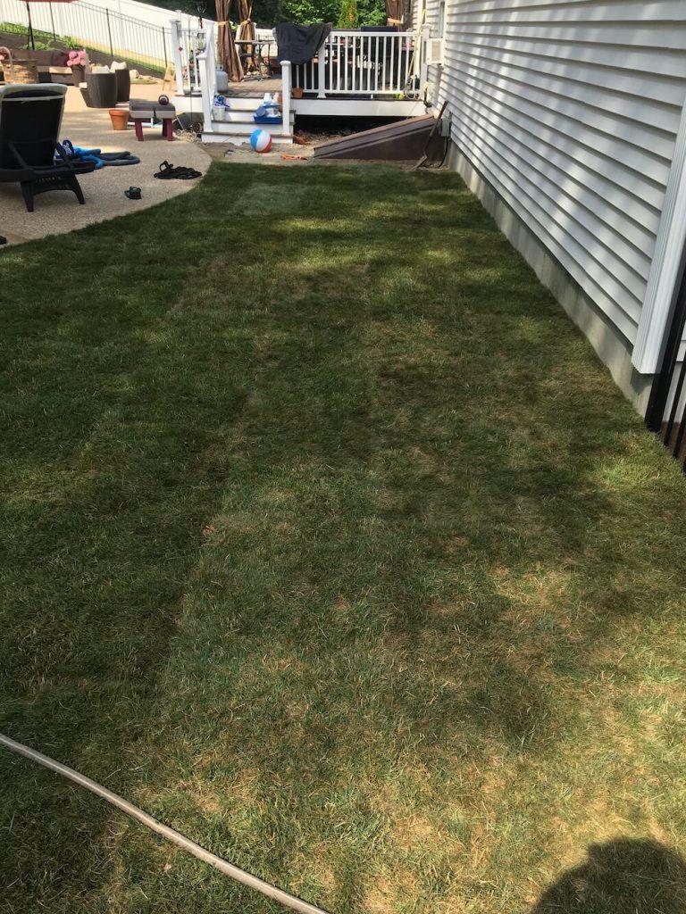 Side yard, sod instillation