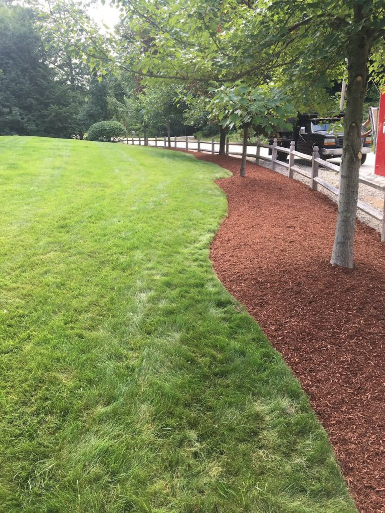 final mulch with edging of front yard