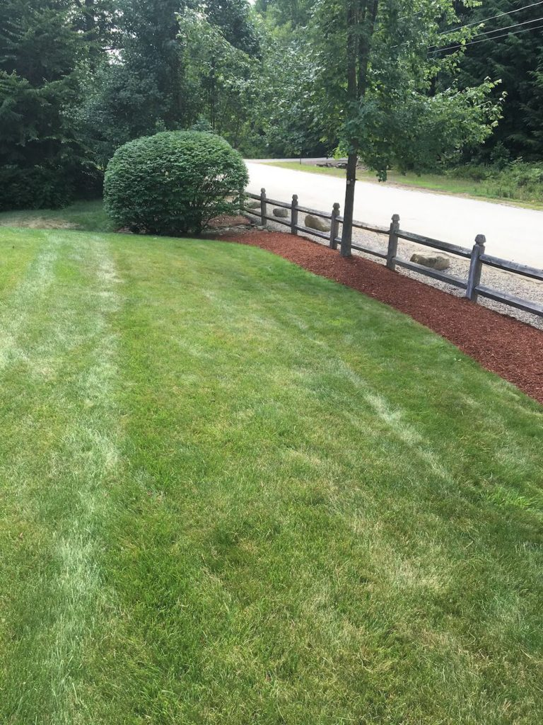 final hedge trim, bark mulch, edging