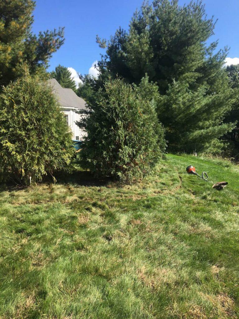 Edging, garden bed, Merrimack NH