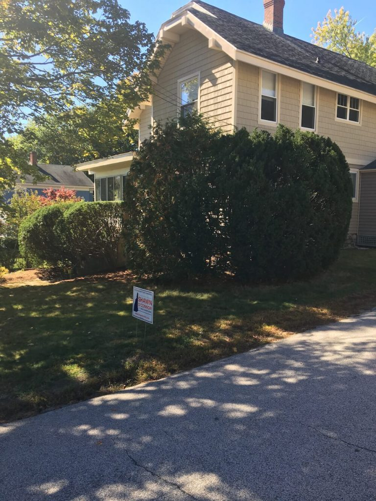 After hedge trim, manchester nh